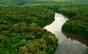 """""""O governo teve essa movimentação sobre este decreto, mas tem outros projetos ambientais circulando no Congresso"""", diz representante do Greenpeace Brasil"""