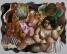 Pinacoteca exibe mostra comemorativa aos 120 anos de Di Cavalcanti