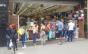 Infectologista avalia flexibilização do isolamento social no Brasil