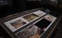 Exposição Arte Veículo apresenta registros artísticos que extrapolam o convencional da imprensa