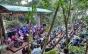 Festival Vermelhos 2017 realiza mais uma edição em Ilhabela