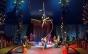 Começa Primeiro Festival Internacional de Circo de São Paulo