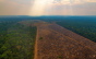 Como será o amanhã: climatologista fala sobre saúde do planeta e desmatamento na Amazônia