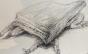 Manu Maltez abre exposição de gravuras 'Fábulas incontornáveis'
