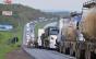 """""""Solução para greve de caminhoneiros não se revelou sábia"""", diz economista"""