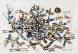 Ricardo Camargo Galeria celebra mais um ano de vida com arte modernista