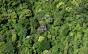 Ambientalista comenta desmatamento na Mata Atlântica, após Salles revogar ato que anistiava infratores