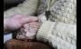 Estudo afirma que 47 milhões de pessoas sofrem de demência