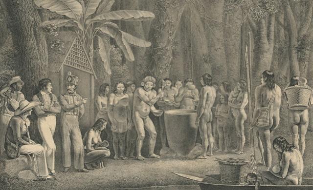 1712 - cirley livro martius